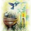 Pastoral Batismo