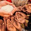 Reflita sobre a crise humanitária na Uganda e seus reflexos